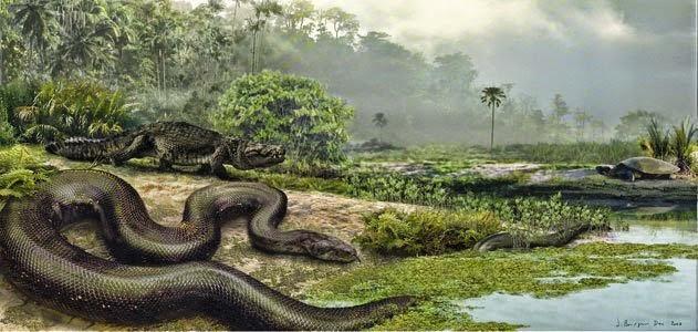 HISTÓRIA – Sucuri pré-histórica tinha mais de 10 metros e pesava 1 tonelada