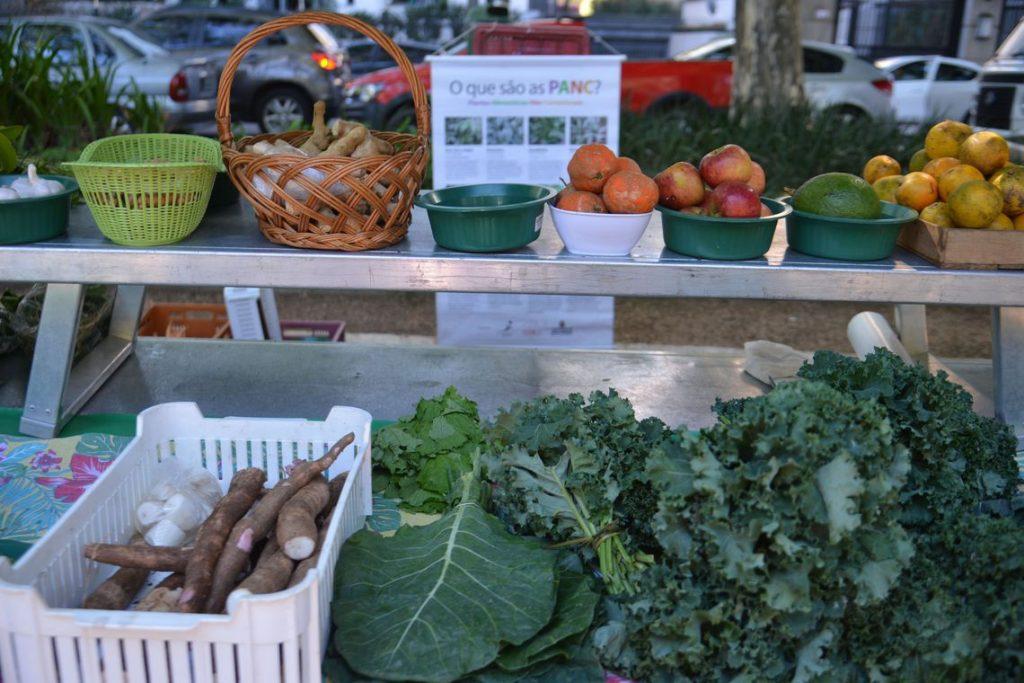 Alimentos orgânicos chegam a 41% na rede de ensino municipal de SP