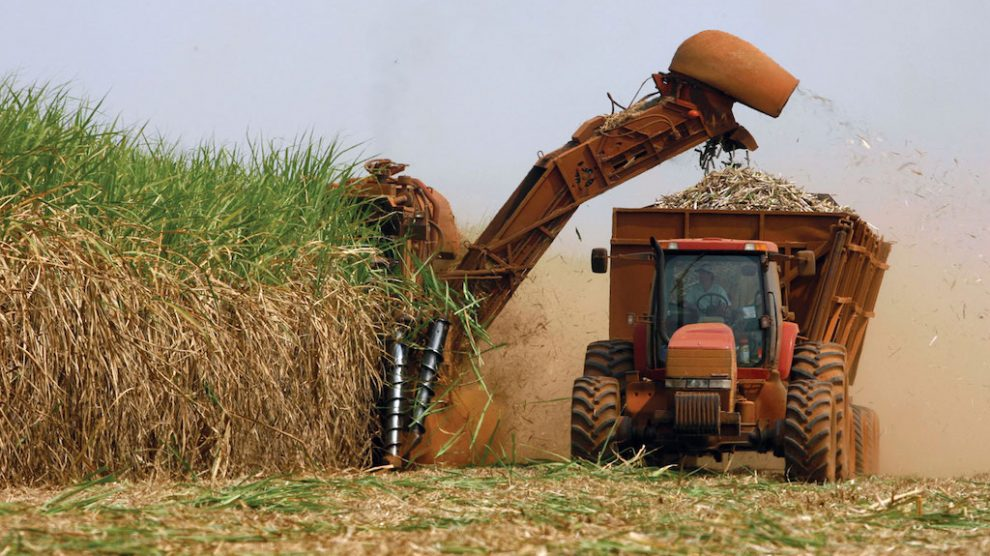 Mercado de açúcar: Com isso ninguém contava! (Por Arnaldo Luiz Correa)