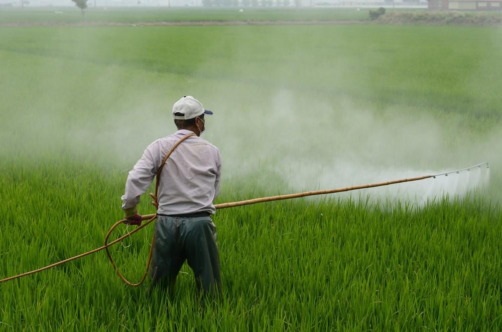 Um terço das terras de uso agrícola no mundo tem 'alto risco' de contaminação por pesticidas