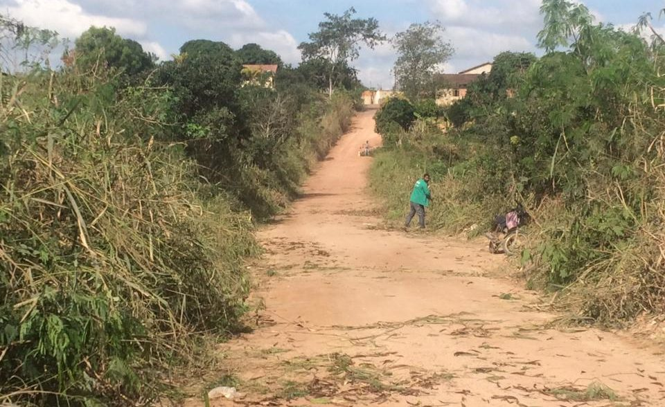 Estrada que liga Praça João Pessoa a Santo Amaro recebe serviço de poda de árvores
