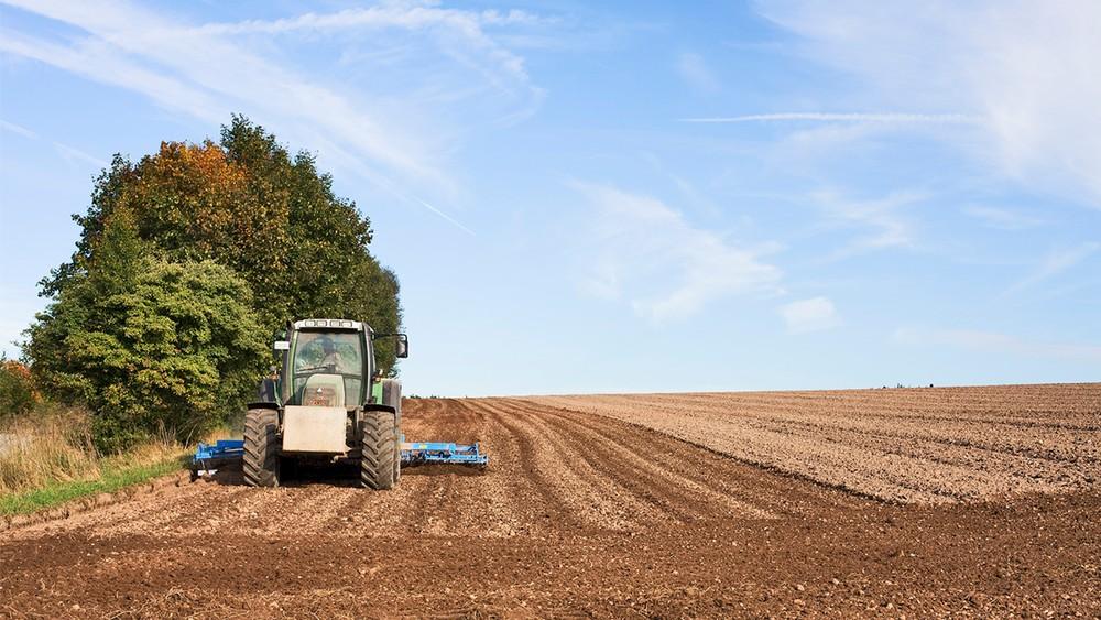 Governo anuncia Plano Safra 2021/22 com R$ 251,2 bilhões para pequenos, médios e grandes produtores rurais
