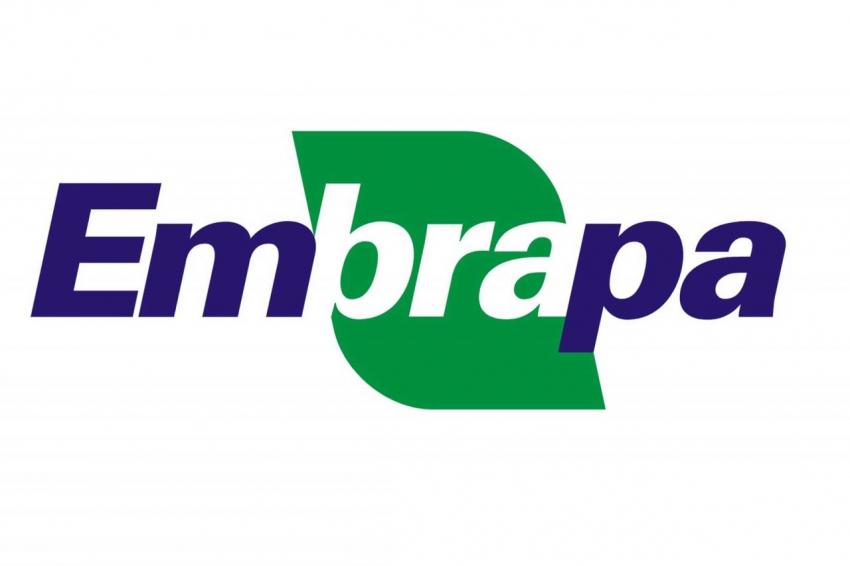 SFI receberá técnicos da Embrapa em setembro